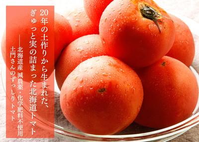 Tomato_bnr1